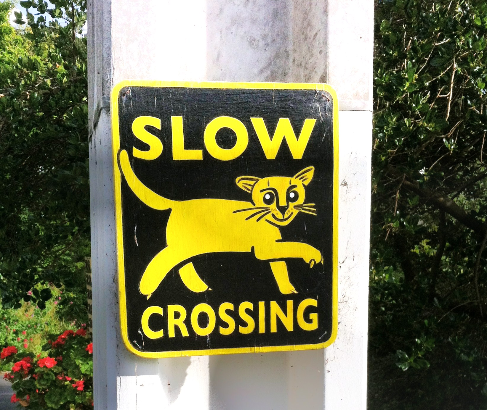 cat-sign