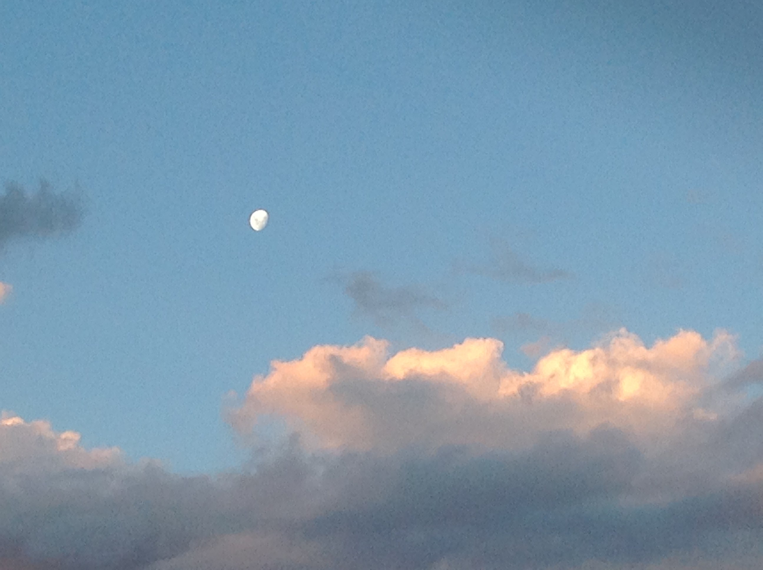 twilight-moon