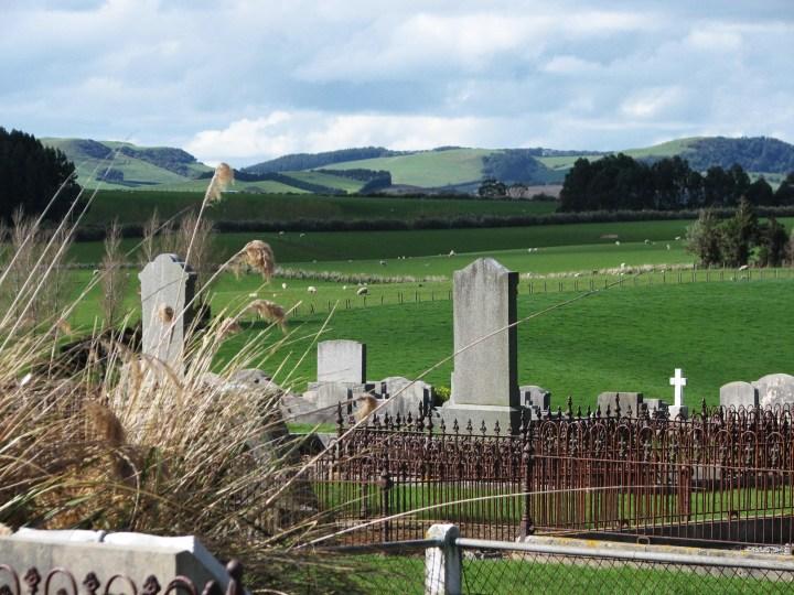 cemetery grass.JPG