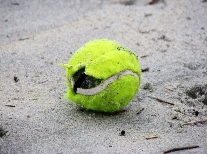 munted tennis ball
