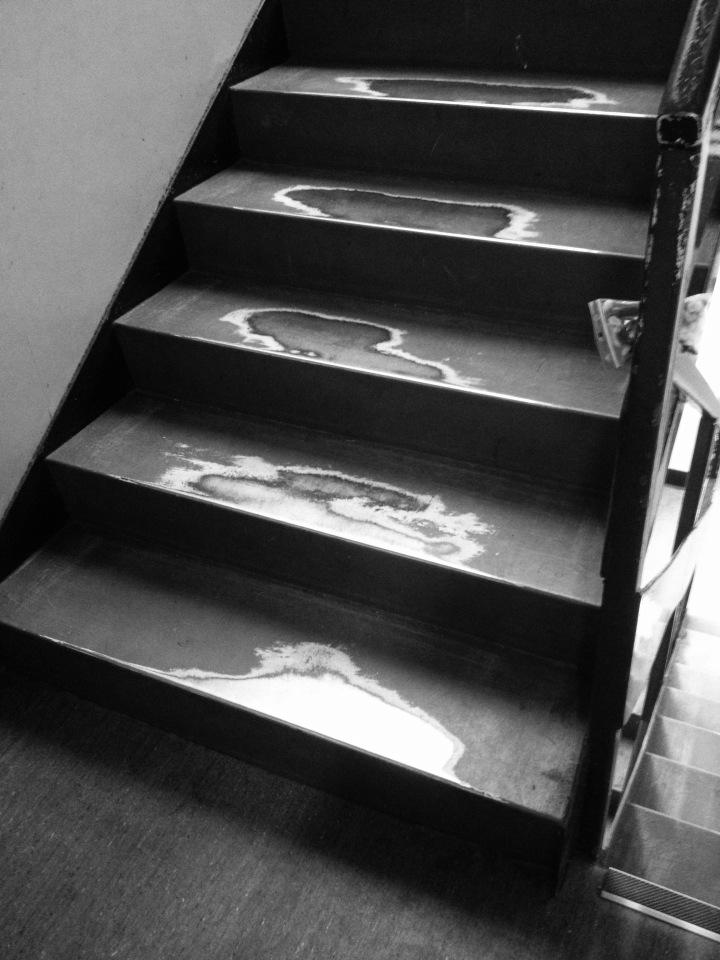 steps up.jpg