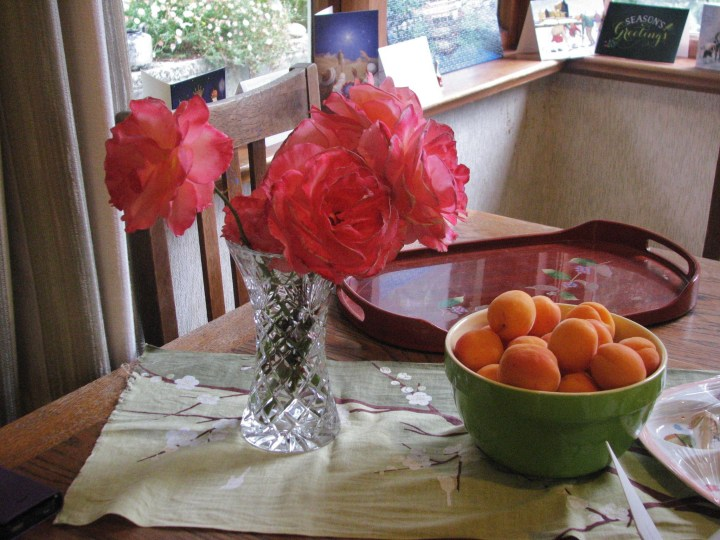 roses and apricots.JPG