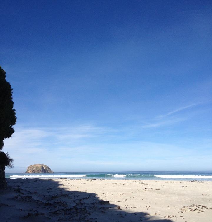 allen Beach