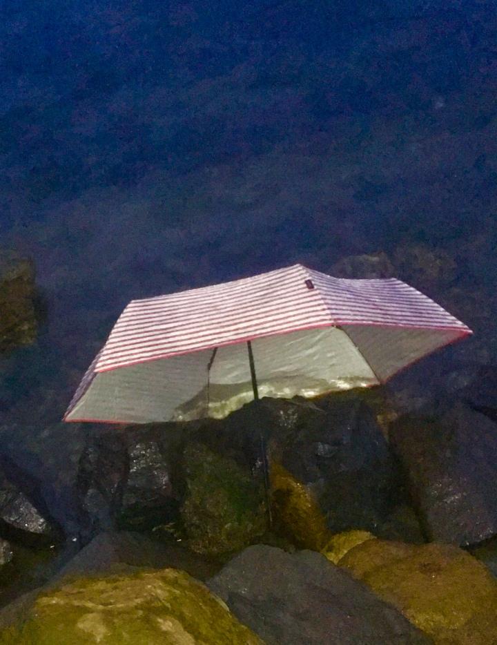 dunked umbrellaFullSizeRender.jpg