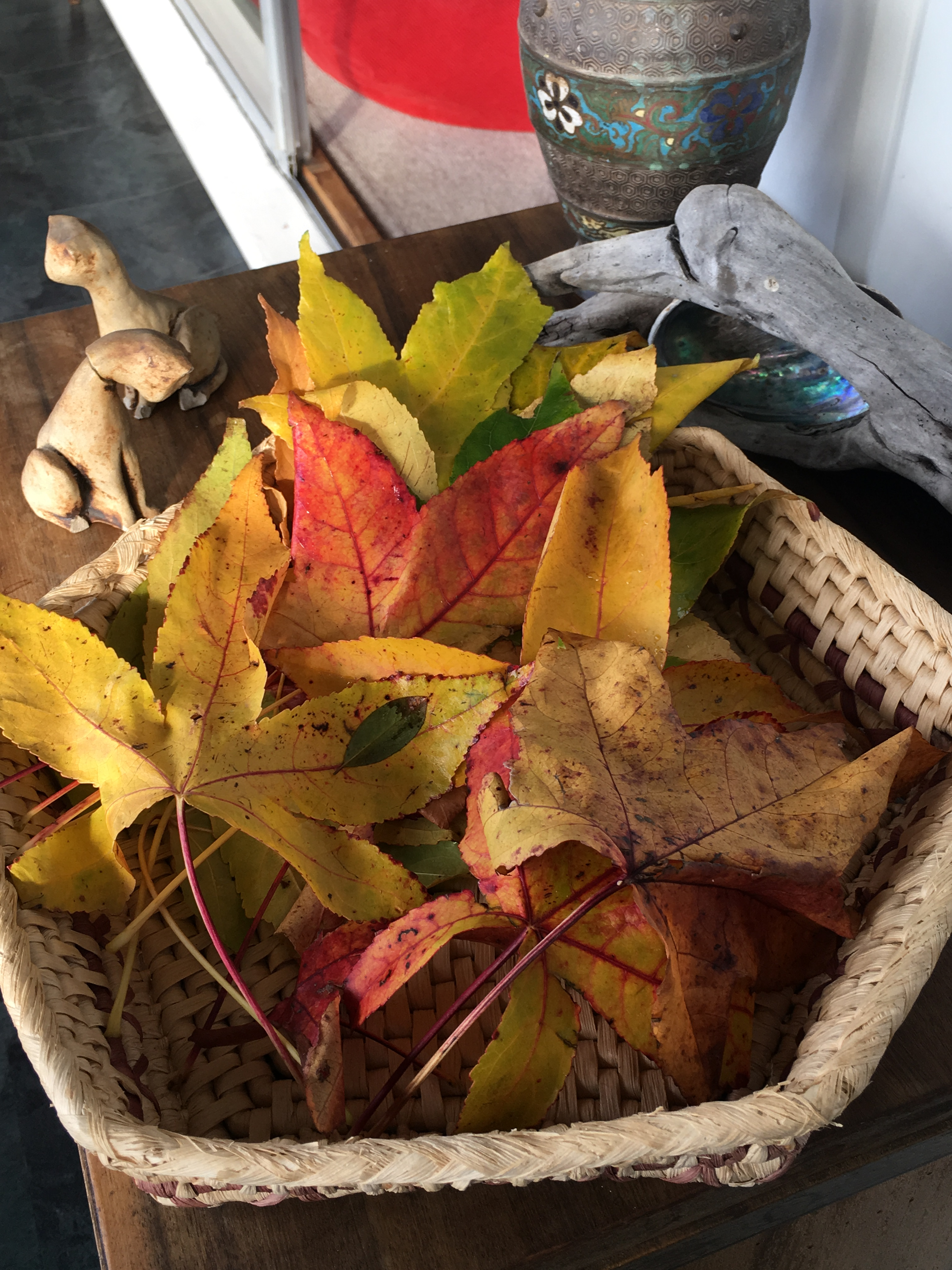 leaves in basket.JPG