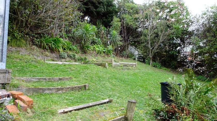 Backyard to Apple tree corner.JPG
