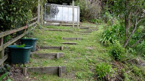 Glasshouse & steps going up.JPG