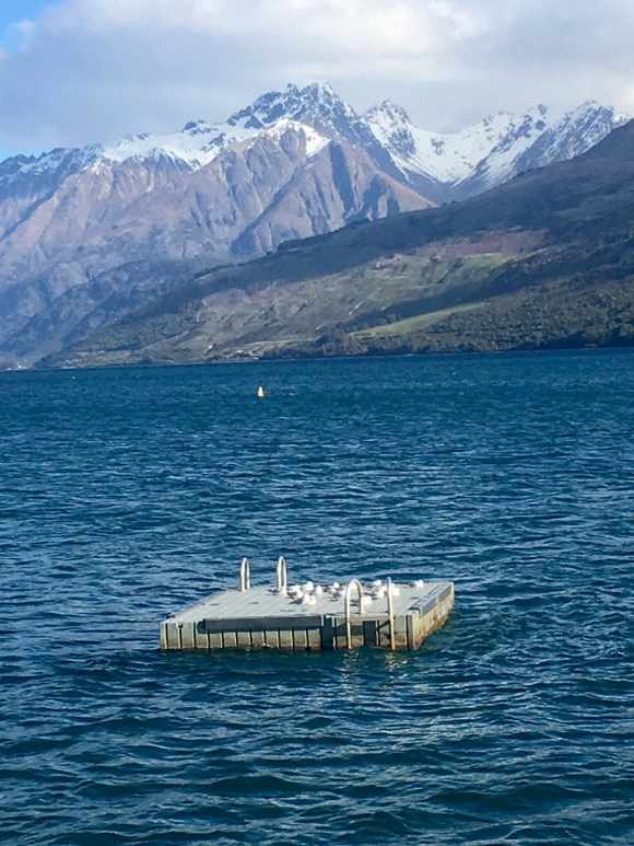 seagull pontoon