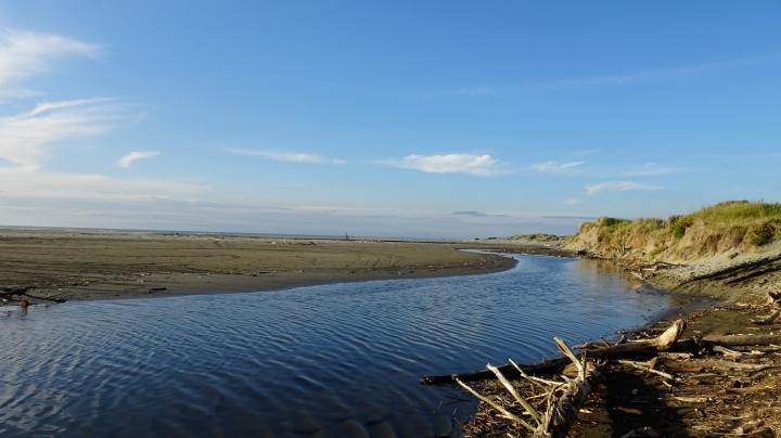 estuary.JPG