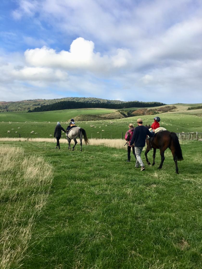 Horse ride puki.jpg