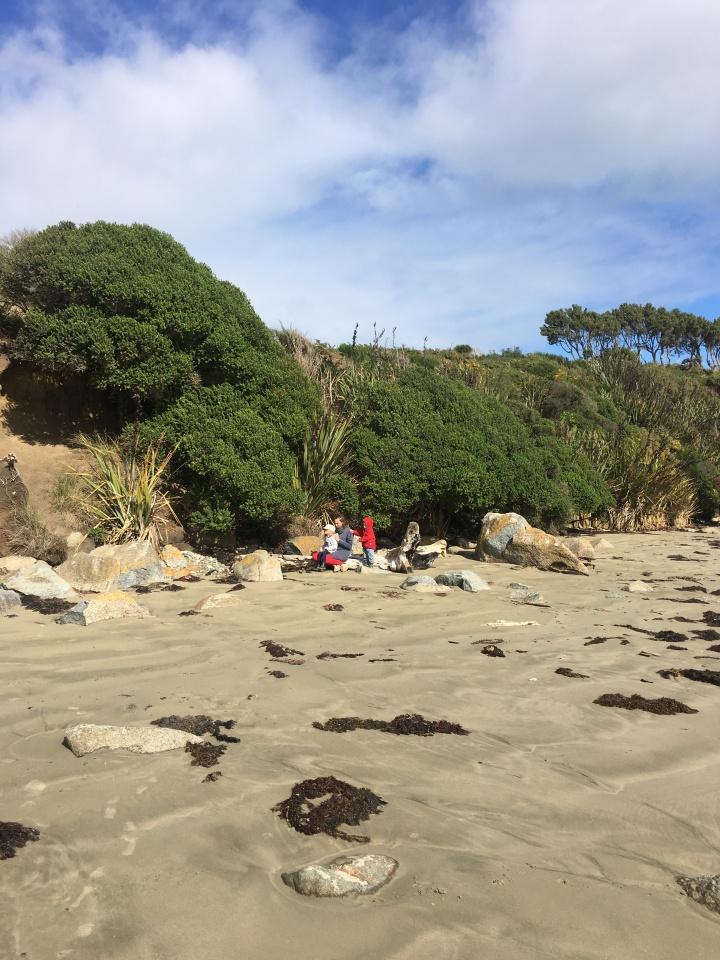 Monkey Island beach corner