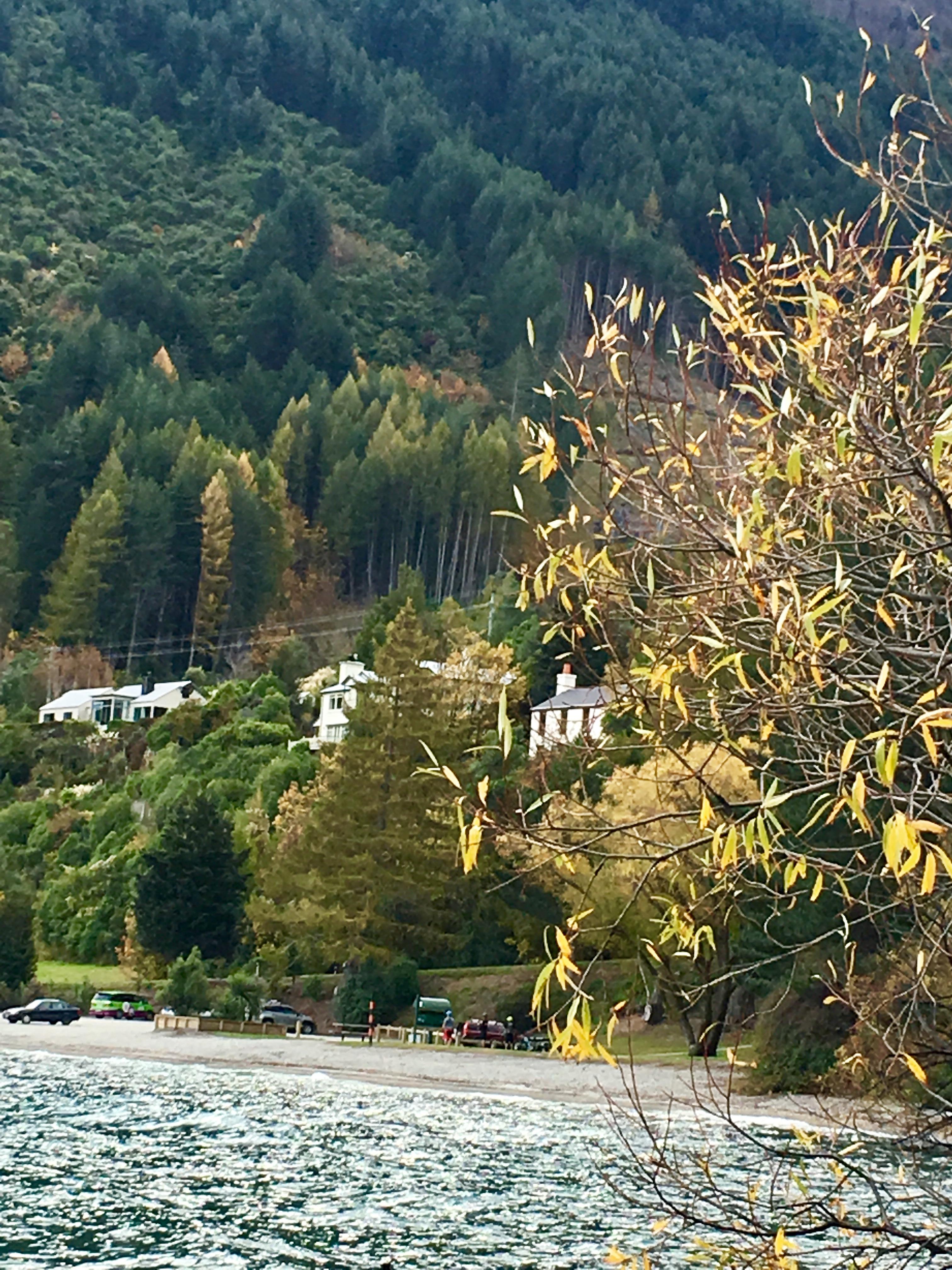 Close Burn in autumn.jpg